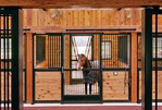 High Stall Front 9: Stall design with bar top; wood and bar bottom; wide center and bottom rails; V-yoke, and feed door.