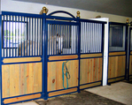 High Stall Front 19: Stall design with bar top; wood bottom; Euro-style center and bottom rails; and brass ball finials.