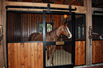 High Stall Front 62: Stall design with bar top; wood bottom; wide center rail; V-yoke; and decorative flat track.