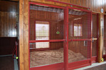 High Stall Front 85: Stall design with crosshatch mesh top and bottom; bedding guard; and fold-down blanket bar.