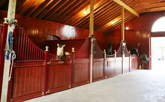 Horse Stall Aisle