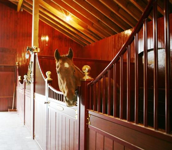 Horse Stall Barrington
