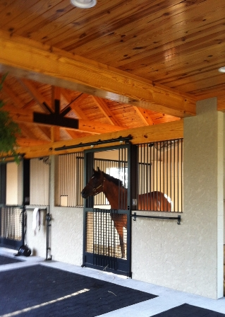 this is one of lynns favorite photos of a mare she rescued i think shes proud of the barn too says lynn - Horse Stall Design Ideas