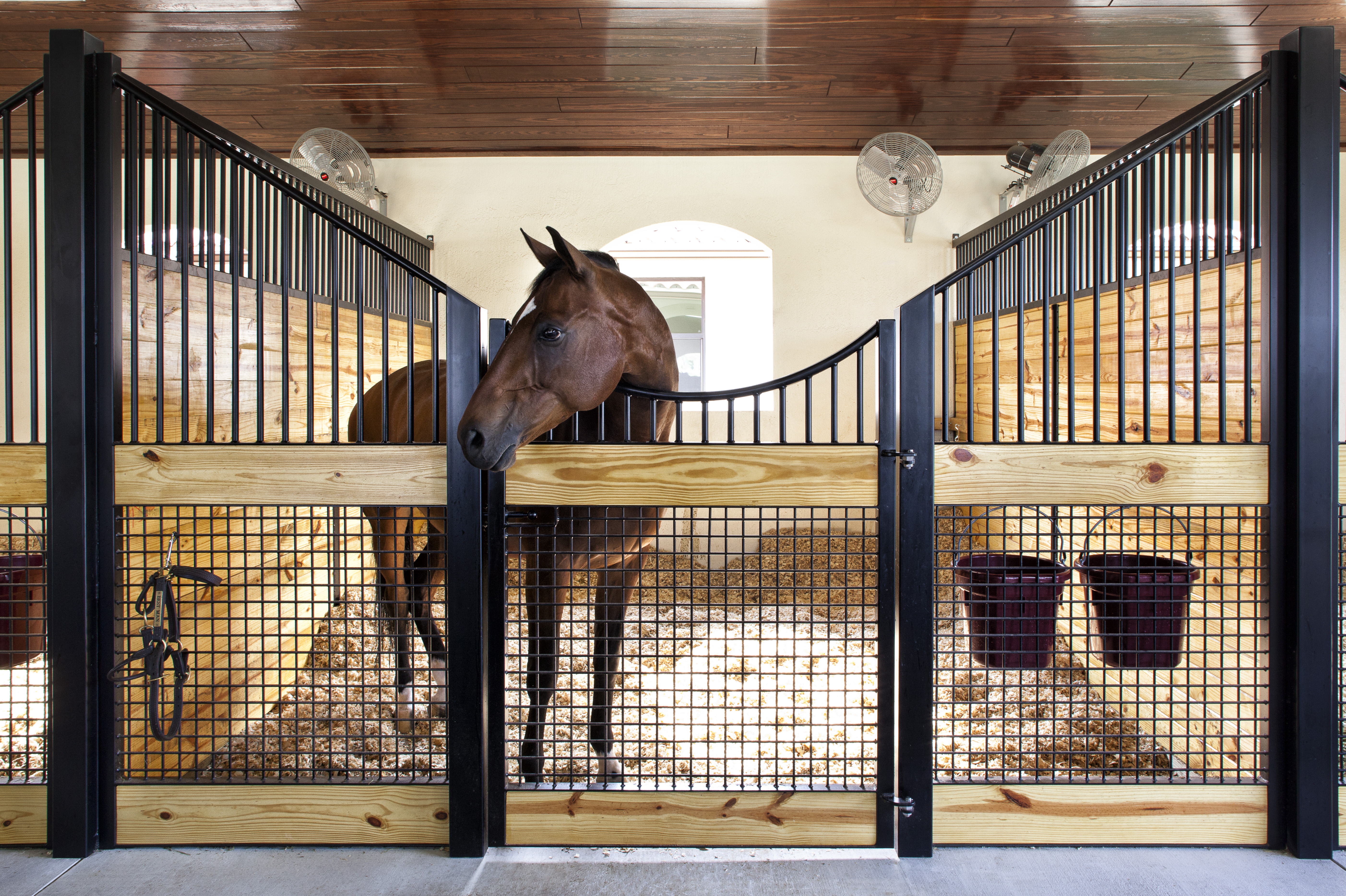 stall front systems horse stalls barn doors stables equine