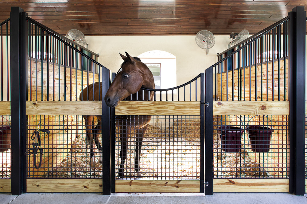 Horse Stall Ideas Wwwpixsharkcom Images Galleries