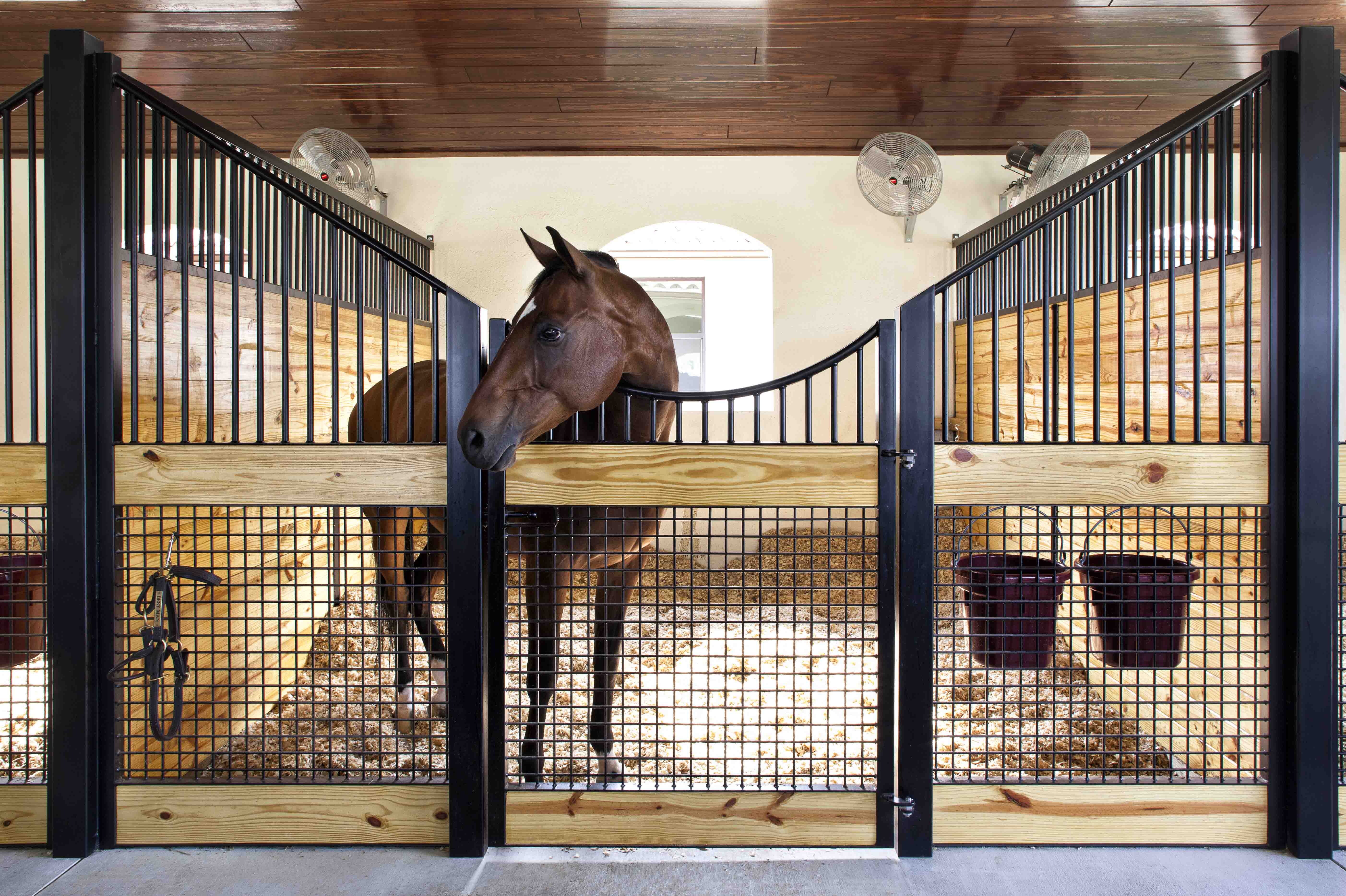 Stall front systems horse stalls barn doors stables for Horse stall plans